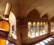Degustazione vini antichi in un sito archeologico per eventi privati